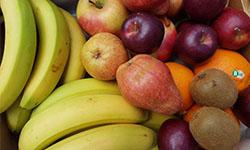 Abokiste Obst